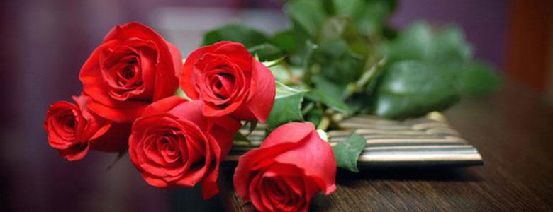 regalo natale fiori